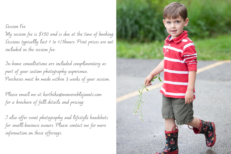 Naperville Family Photographer Memorable Jaunts Investment for Family Portraits