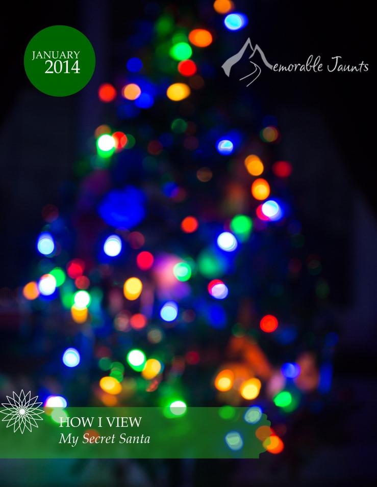 Christmas Tree with Lights and Blokeh